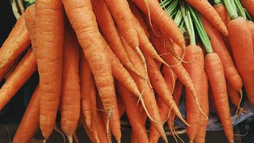 Verduras buenas para la salud del conejo